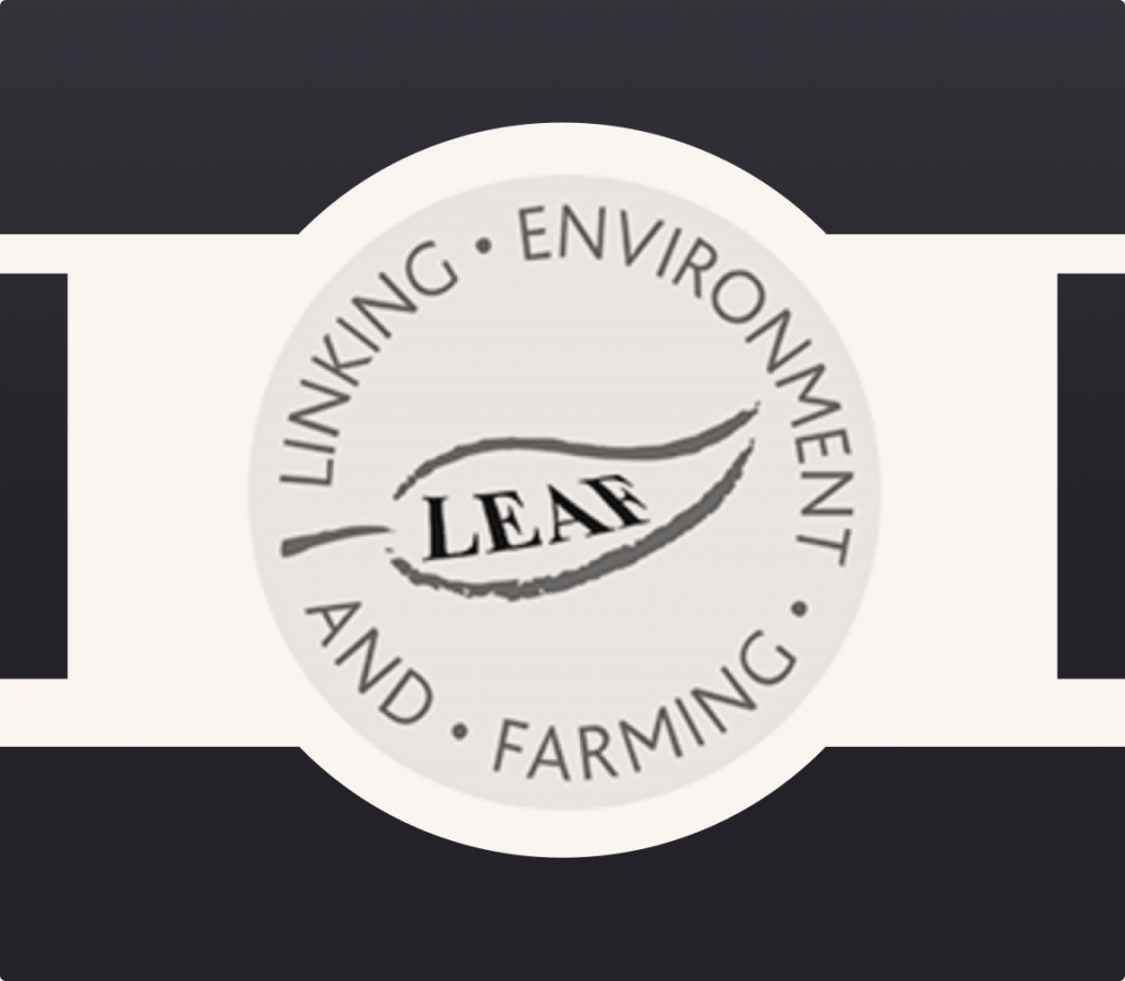 Logo of LEAF