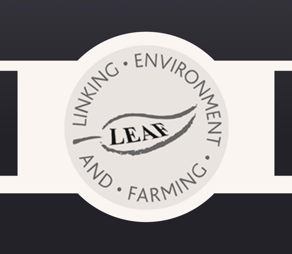 Logo of LEAF